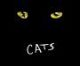 Class of '13 Musical Production of CATS