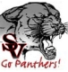 Class of '01 SV Panther Pride Stadium Campaign GOLF OUTING