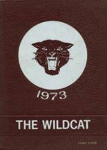 View Henry County High School 1973 Yearbook